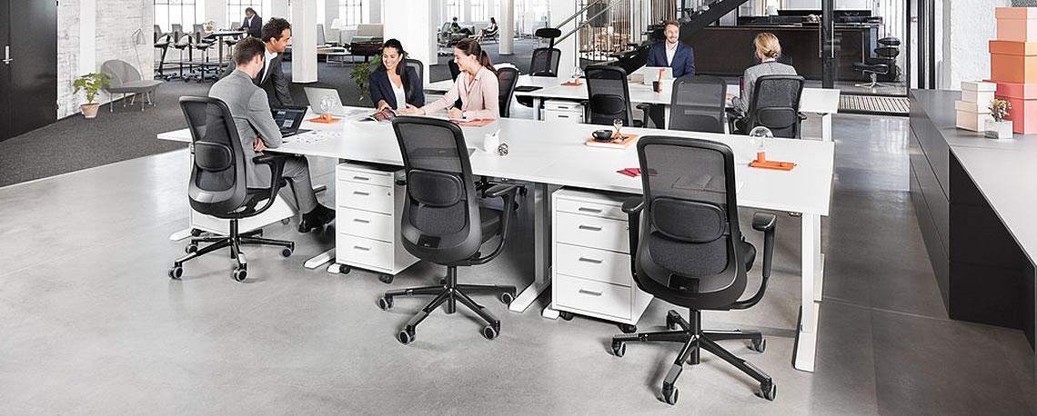 Ergonomie Katalog: Ergonomische Büromöbel und Möbel für die Wohnung